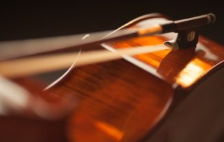 What you should know about Violin Bows!