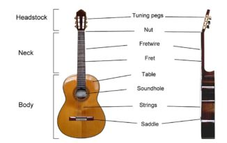 The Parts of the Guitar: Knowing your Instrument